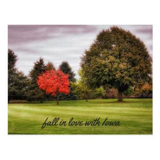 Fall in Love with Iowa Postcard