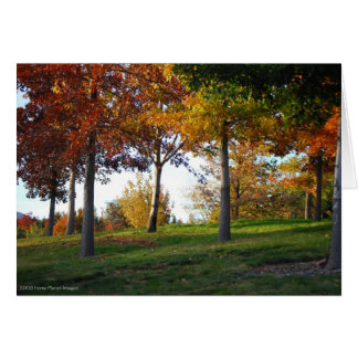 Fall in Reno Nevada Notecard