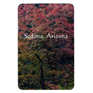 Fall in Sedona Magnet