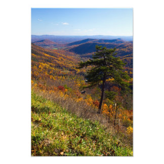 Fall in Shenandoah National Park Virginia Photographic Print