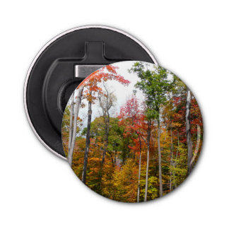 Fall in the Forest Colorful Autumn Photography Bottle Opener