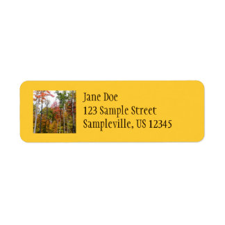 Fall in the Forest Colorful Autumn Photography Return Address Label