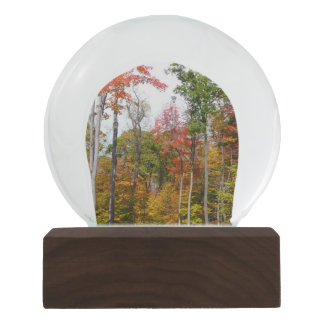 Fall in the Forest Colorful Autumn Photography Snow Globe