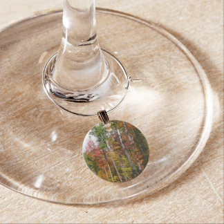 Fall in the Forest Colorful Autumn Photography Wine Charm