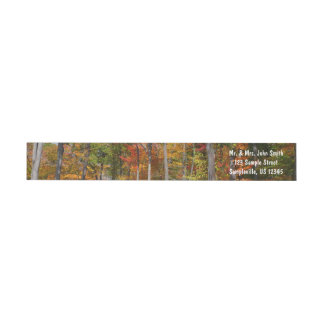 Fall in the Forest Colorful Autumn Photography Wrap Around Label