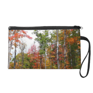 Fall in the Forest Colorful Autumn Photography Wristlet