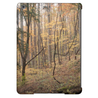 Fall in the Great Smoky Mountains iPad Air Case