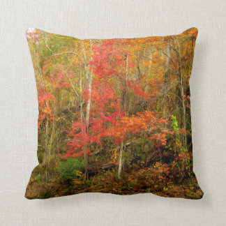 Fall In The Smoky Mountains Cushion