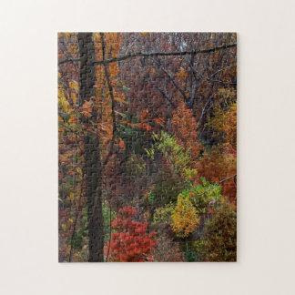 Fall Landscape in Arkansas Jigsaw Puzzel Jigsaw Puzzle