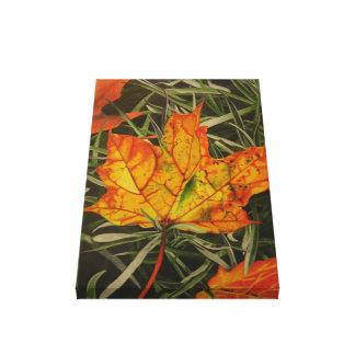 """Fall Leaf"" by Jenny Koch Gallery Wrap Canvas"