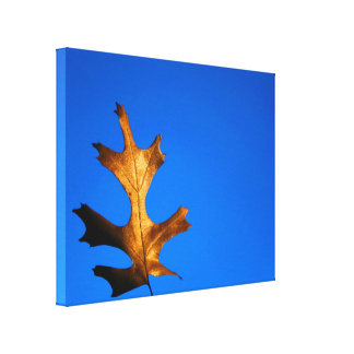 Fall Leaf Gallery Wrapped Canvas