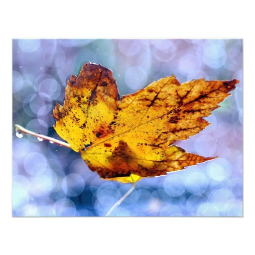 Fall Leaf Custom Announcements