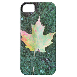 Fall Leaf iPhone 5 Covers