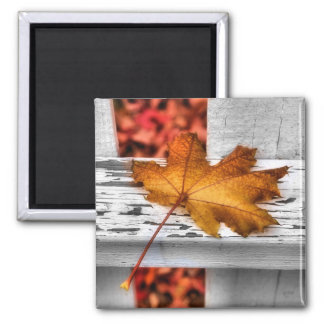 Fall Leaf Magnet