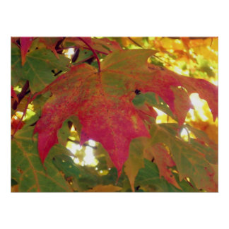 Fall Leave Before It Falls Print