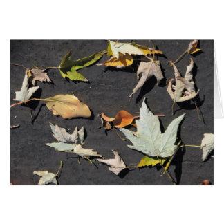 Fall Leaves 1 Card