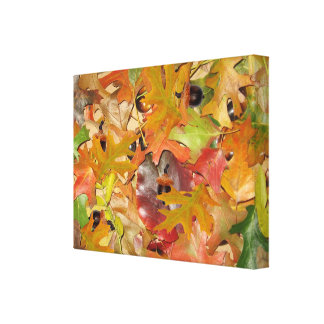 Fall Leaves and Acorns Stretched Canvas Print