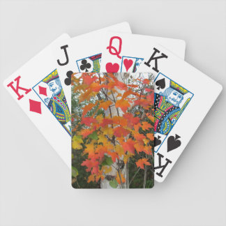 Fall leaves and birch tree playing cards