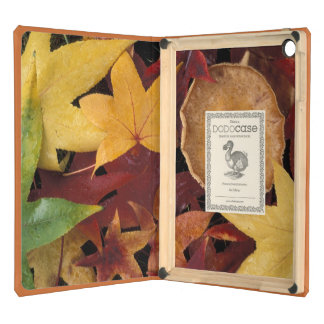 Fall leaves and toadstool iPad air cover