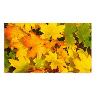 Fall Leaves Autumn Colors Leaf Design Business Card Templates