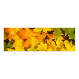 Fall Leaves Autumn Colors Leaf Design Business Card Template