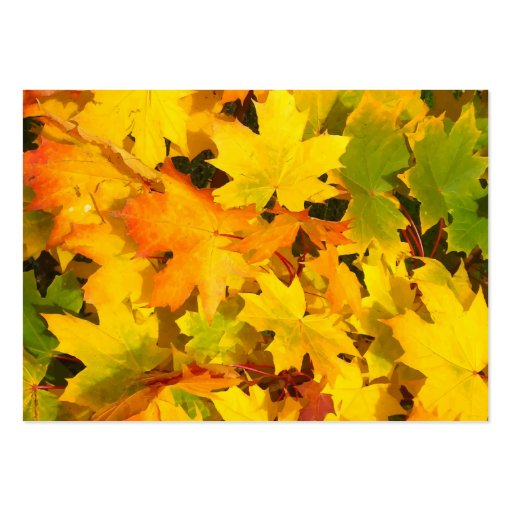 Fall Leaves Autumn Colors Leaf Design Business Cards