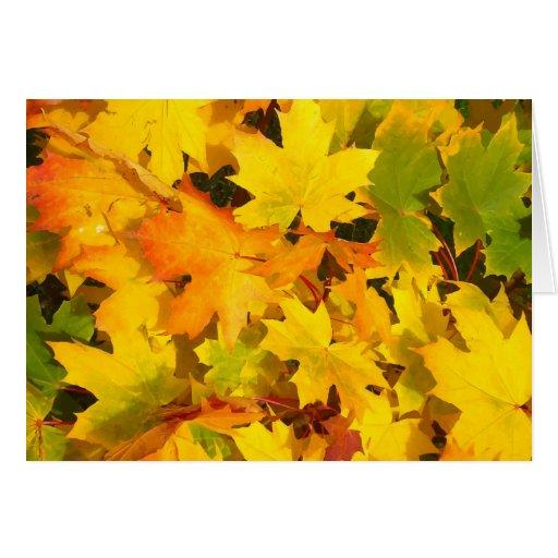 Fall Leaves Autumn Colors Leaf Design Greeting Card
