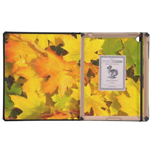 Fall Leaves Autumn Colors Leaf Design Cover For iPad