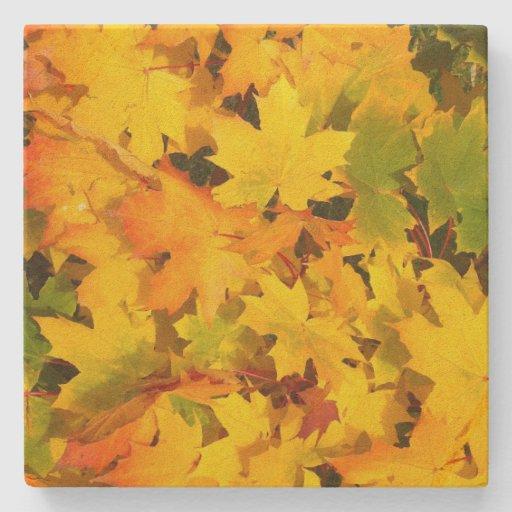 Fall Leaves Autumn Colors Leaf Design Stone Beverage Coaster