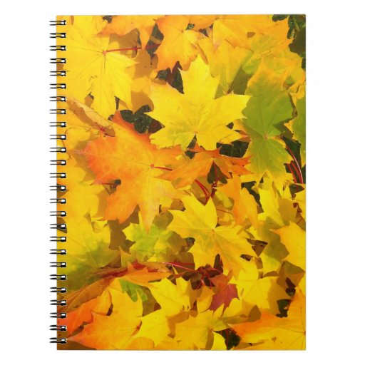 Fall Leaves Autumn Colors Leaf Design Note Books