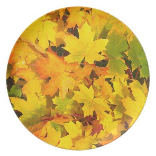Fall Leaves Autumn Colors Leaf Design Plate