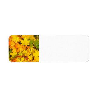 Fall Leaves Autumn Colors Leaf Design Return Address Label