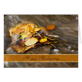 Fall Leaves In A Stream Thanksgiving Card