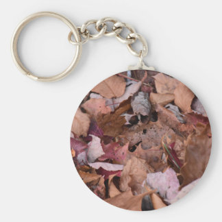 Fall leaves in the Smoky Mountains Basic Round Button Key Ring