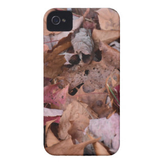Fall leaves in the Smoky Mountains Case-Mate iPhone 4 Cases