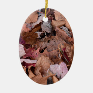 Fall leaves in the Smoky Mountains Ceramic Oval Decoration
