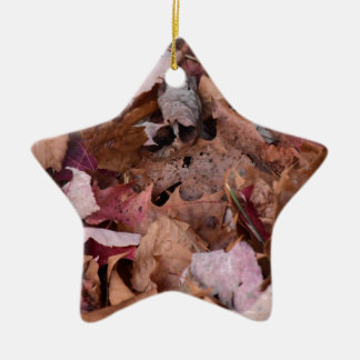 Fall leaves in the Smoky Mountains Ceramic Star Decoration