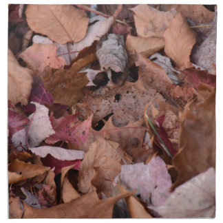Fall leaves in the Smoky Mountains Napkin