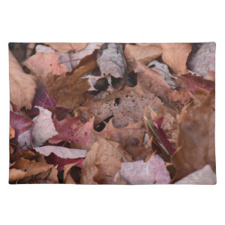 Fall leaves in the Smoky Mountains Placemat