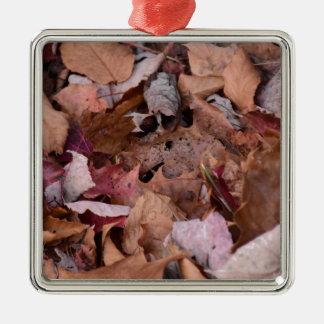 Fall leaves in the Smoky Mountains Silver-Colored Square Decoration