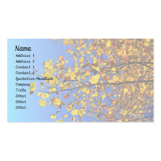 Fall Leaves in the Sun Business Card