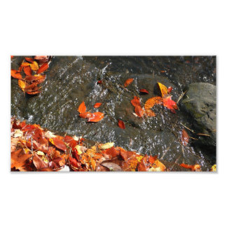 Fall Leaves in Waterfall I Autumn Photography Photo Print
