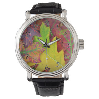 Fall Leaves in yellow, red, orange and Purple Watch