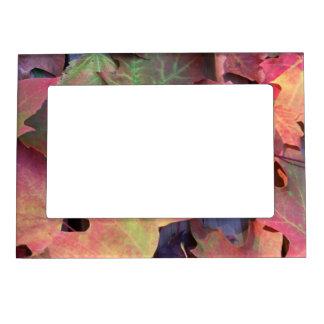 Fall Leaves Magnetic Frame