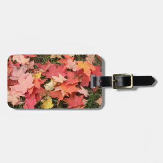Fall Leaves on The Grass Bag Tag