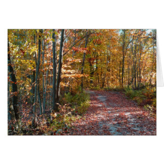 Fall leaves, path in woods, Autumn landscape Card