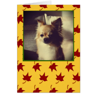 Fall Leaves: Red Leaf, Customized Greeting Card