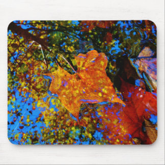 Fall leaves & reflection Fall leaf with Rocks in m Mouse Pads