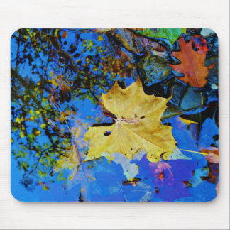 Fall leaves & reflection mouse pad