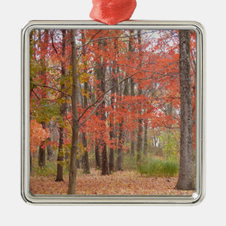 fall leaves Silver-Colored square decoration
